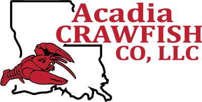Acadia Crawfish